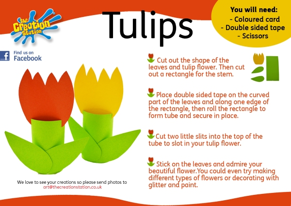 tulip how to